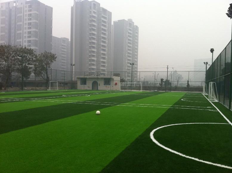 广安市华福小学案例