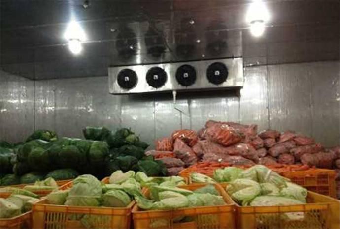 水果放进冷库要注意的事项有哪些?
