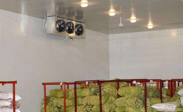 你知道果蔬贮藏冷库的构造注意事项吗?