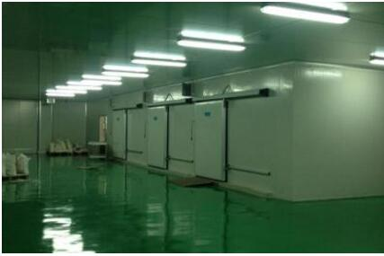 海鲜冷库工程在设计冷库建设方案时要注意哪些?