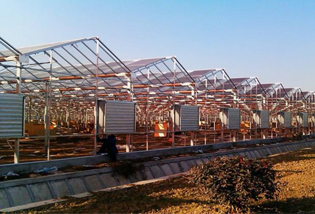 攀枝花太阳能温室大棚