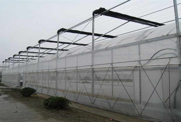四川钢结构温室