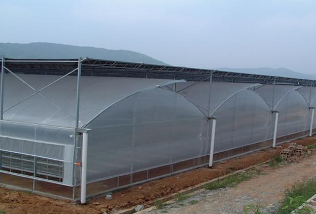 四川温室大棚工程