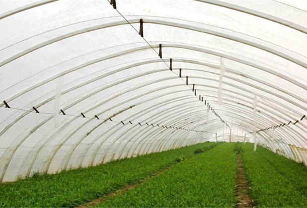 四川蔬菜温室大棚安装