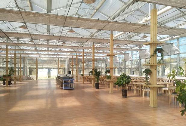 广安玻璃温室大棚