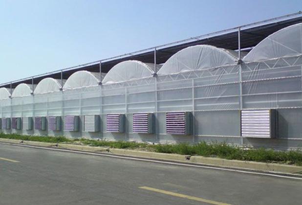 四川高架薄膜棚