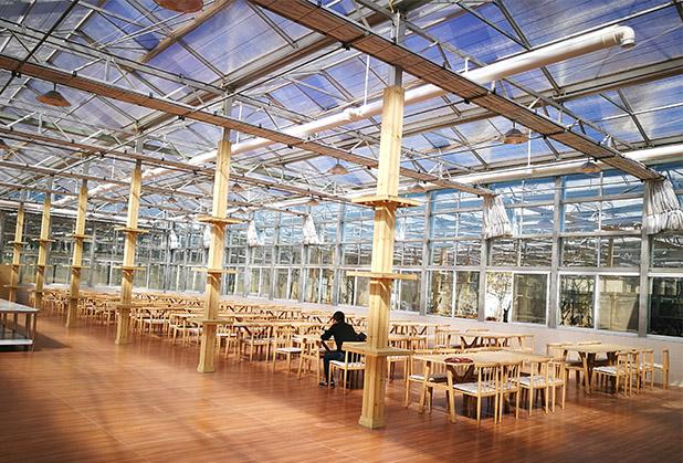 泸州生态餐厅设计