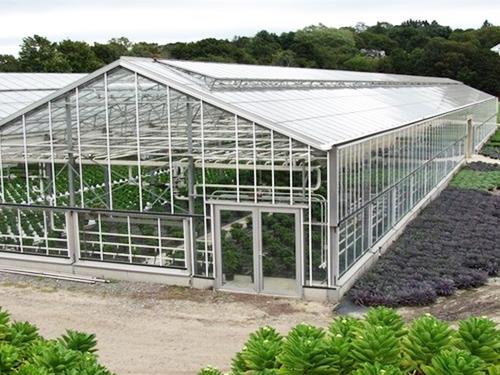 四川玻璃温室大棚