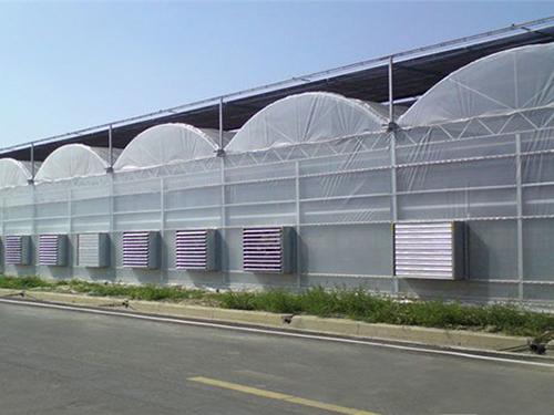 更换温室大棚薄膜需要注意哪些要点?