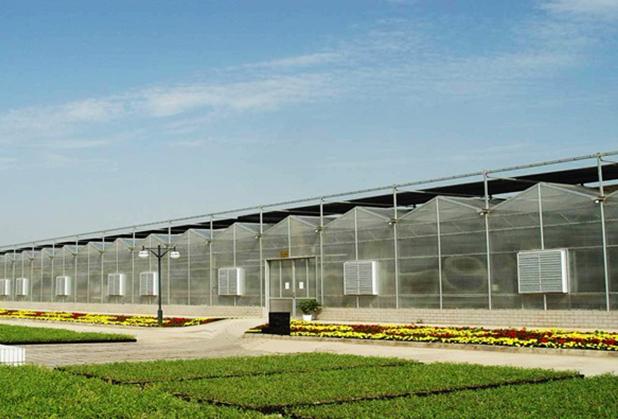 夏日炎炎怎么给四川温室大棚里的植被降降温呢