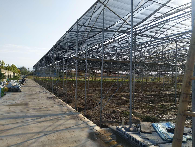 干货分享:四川温室大棚告诉您怎么日常维护大棚膜。