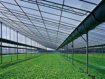 四川温室大棚有哪些优点?