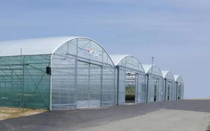 智能温室大棚除了种菜还能够做什么?