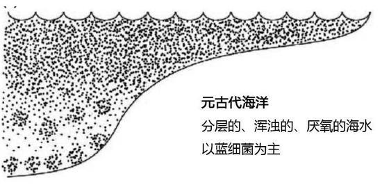 """5亿多年前,生产氧气的大功臣竟是一种""""石头""""?"""