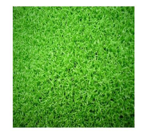 天然草坪好和人造草坪哪個更好呢?人造草坪廠家給我們具體的詳解?