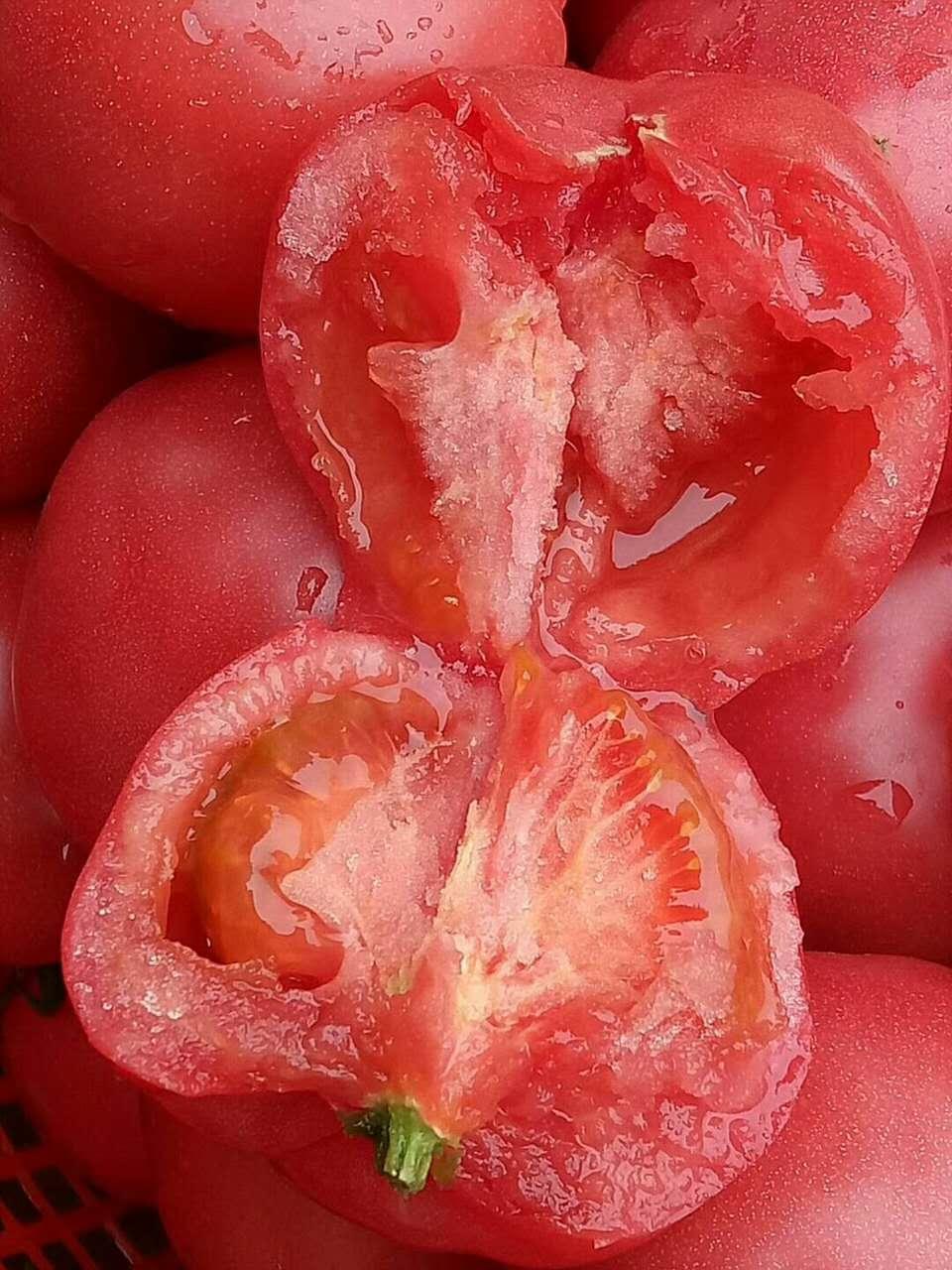 水果西紅柿