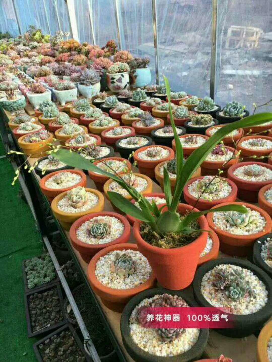 環保花盆生產